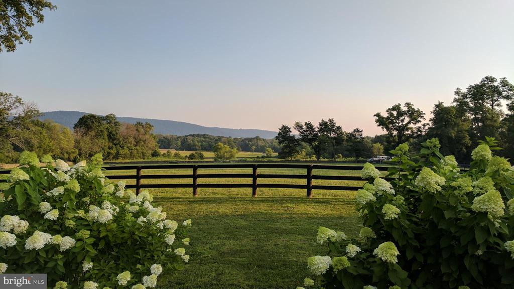 mountain and paddock view from patio - 20775 AIRMONT RD, BLUEMONT