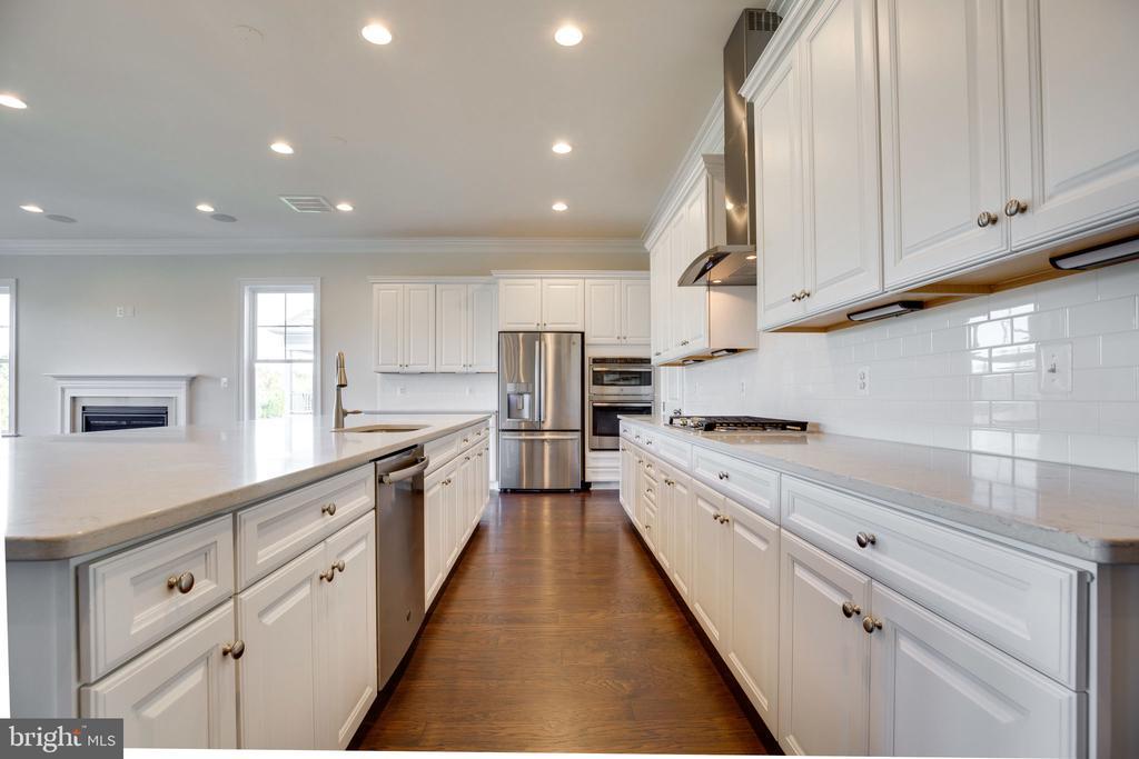 Upgraded kitchen cabinets & appliances - 25955 CULLEN RUN PL, ALDIE