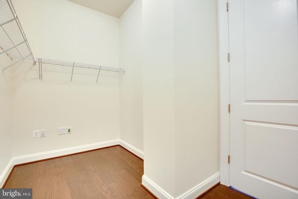 owner's walk-in closet - 25955 CULLEN RUN PL, ALDIE