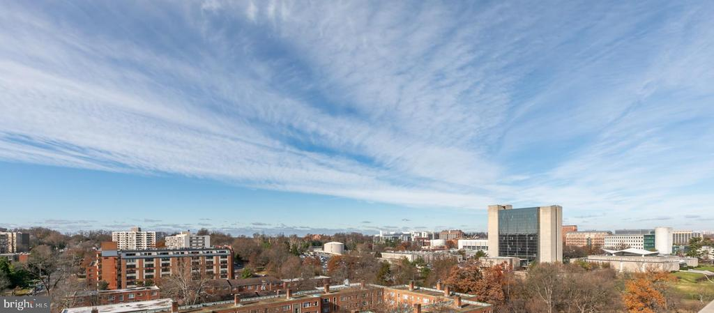 View from community rooftop terrace - 8302 WOODMONT AVE #801, BETHESDA