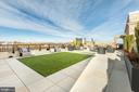 Community rooftop terrace - 8302 WOODMONT AVE #801, BETHESDA