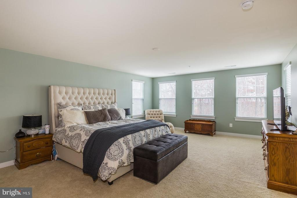 The owner's suite is perfection - 17101 GULLWING DR, DUMFRIES