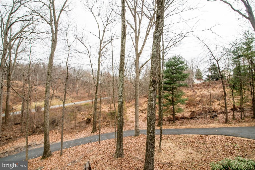 Private Driveway - 11110 KINGSTEAD RD, DAMASCUS
