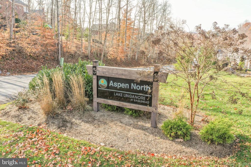 Surrounded by all new homes in Aspen North - 6849 E SHAVANO RD, NEW MARKET