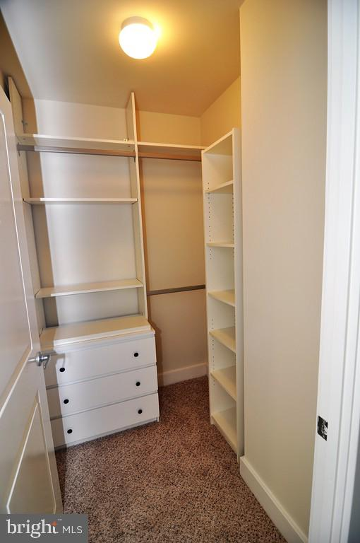 Closet with built-ins and organizers - 1200 N HARTFORD ST #507, ARLINGTON