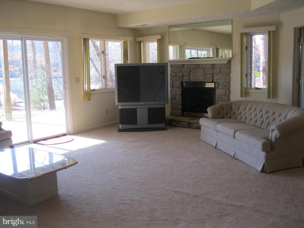 Walk out basement recreation room w/gas fireplace - 134 HARRISON CIR, LOCUST GROVE