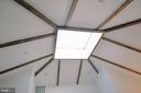 Huge skylight w/vaulted beamed ceiling - 39006 LIME KILN RD, LEESBURG