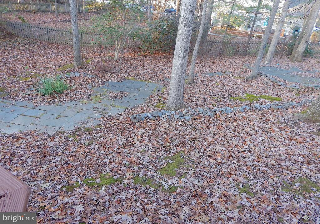 Wooded back yard, view from deck - 6205 PROSPECT ST, FREDERICKSBURG