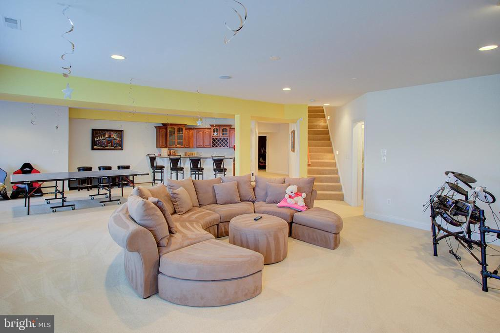 Lower level recreation area - 18918 CANOE LANDING CT, LEESBURG