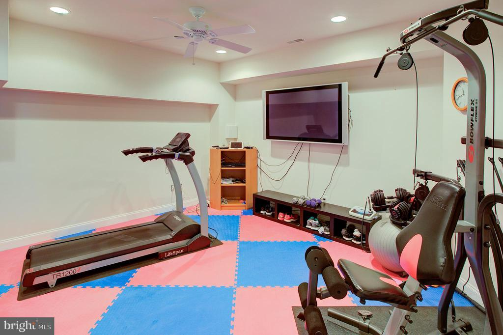 Lower level exercise room - 18918 CANOE LANDING CT, LEESBURG