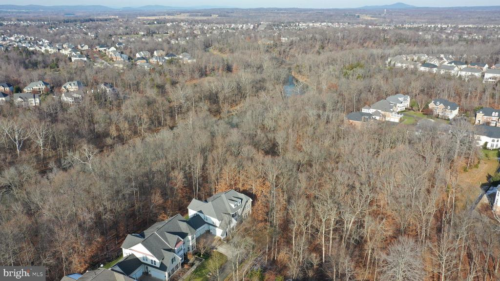 View from above! - 18918 CANOE LANDING CT, LEESBURG