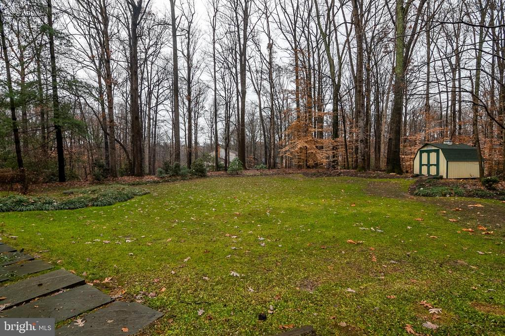Large yard with shed - 11123 CLARA BARTON DR, FAIRFAX STATION