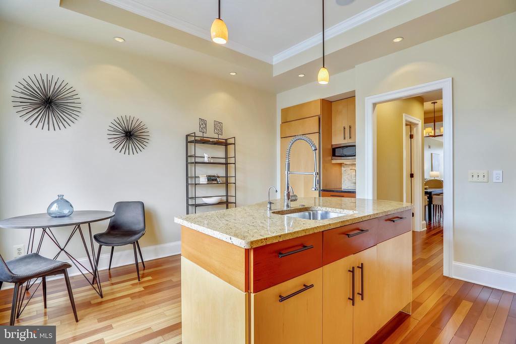 Madura Gold Granite Island & Dimmable Lighting - 1324 FAIRMONT ST NW #B, WASHINGTON