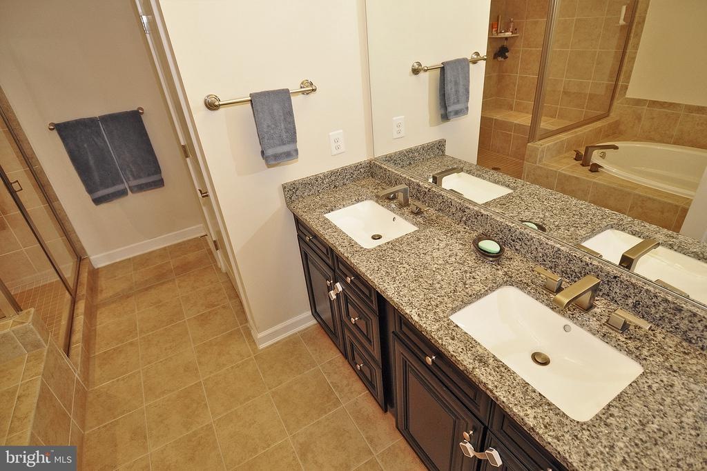 Master Bath with Dual Sinks - 22426 PHILANTHROPIC DR, ASHBURN