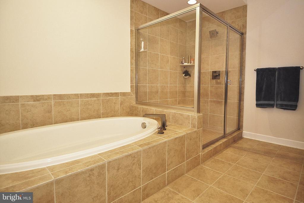 Master Bath Soaking Tub and Separate Shower - 22426 PHILANTHROPIC DR, ASHBURN