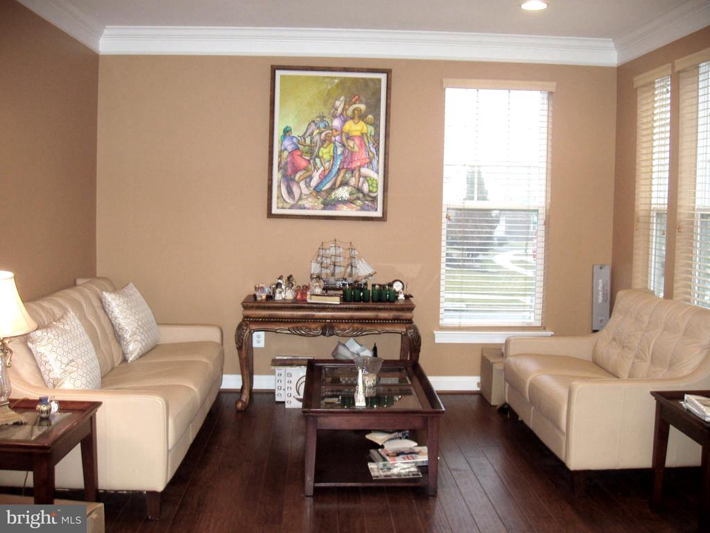 ENTERTAINING LIVING ROOM - HARDWOOD FLORS - 13501 WINDY MEADOW LN, SILVER SPRING