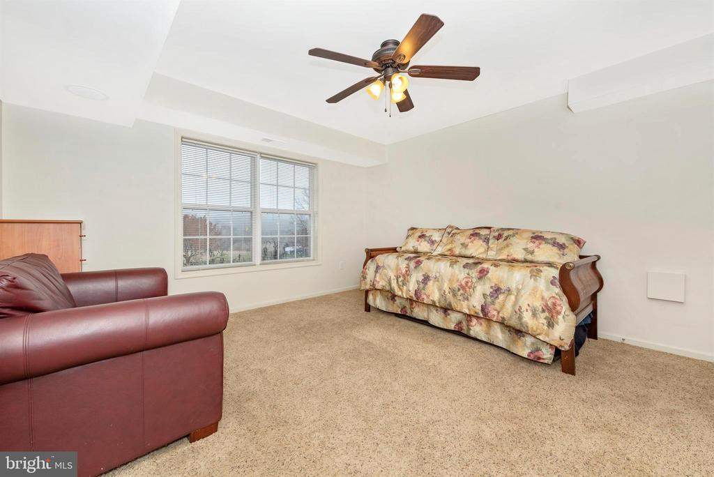 Lower Level Bedroom 5 - 8400 RIVER MEADOW DR, FREDERICK