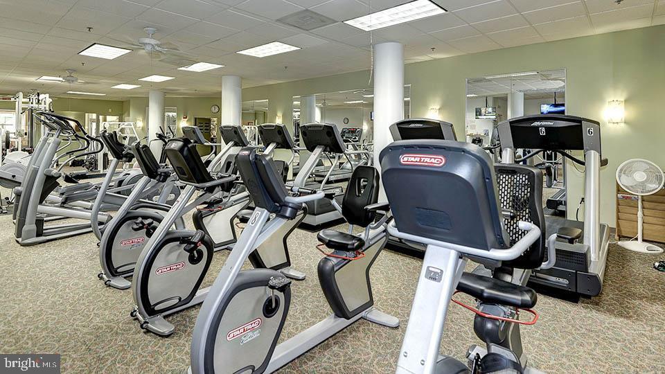 Fitness Center - 19375 CYPRESS RIDGE TER #822, LEESBURG