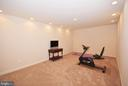 Lower level exercise/workout room. - 702 PILOT HOUSE DR, ANNAPOLIS