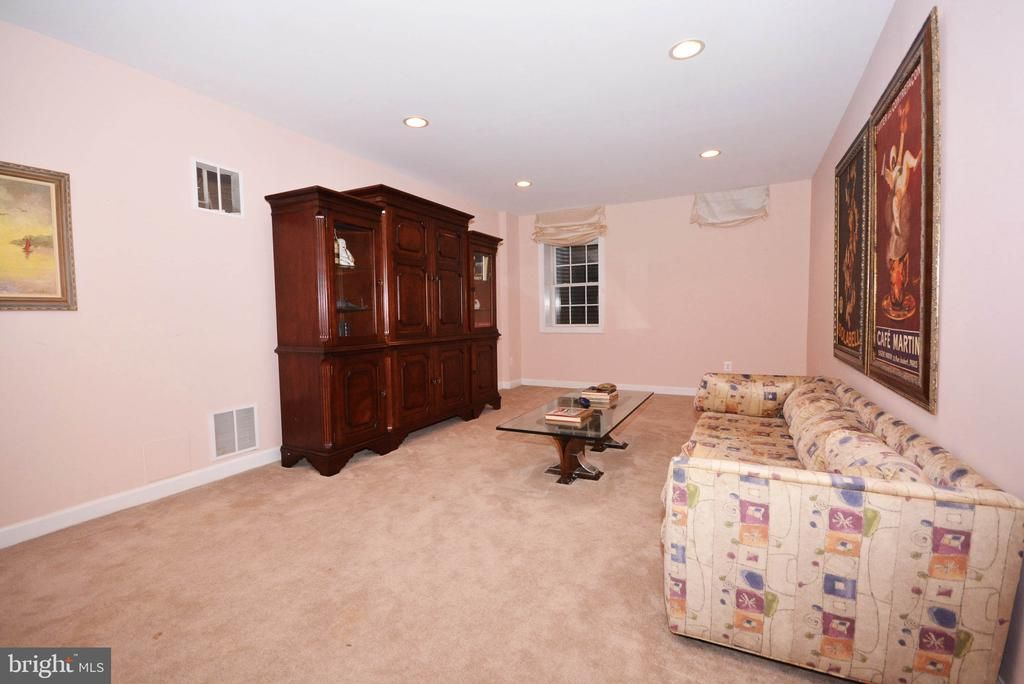 Recreation room on lower level. - 702 PILOT HOUSE DR, ANNAPOLIS