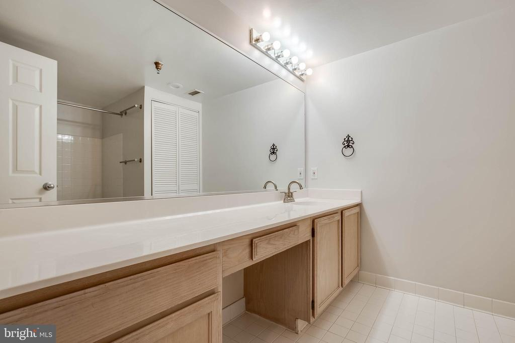 Lots of storage in the master bath! - 2400 CLARENDON BLVD #1004, ARLINGTON