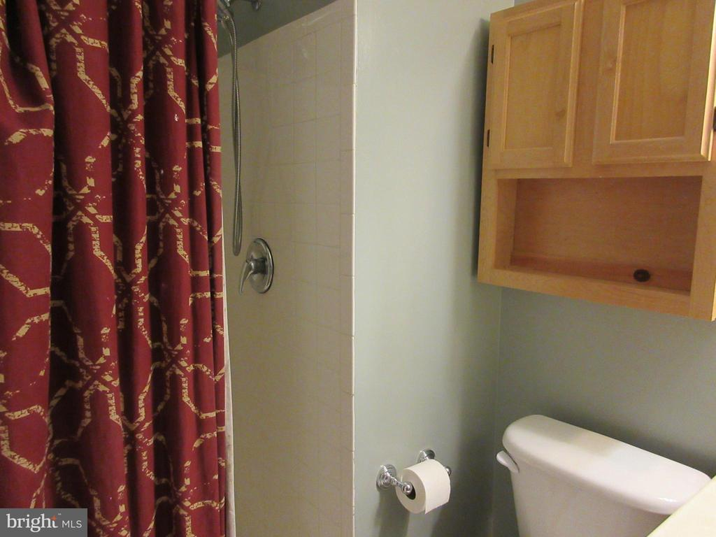 Master bath - 1308 CLIFTON ST NW #401, WASHINGTON