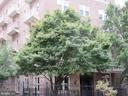 Gated front entry - 1308 CLIFTON ST NW #401, WASHINGTON