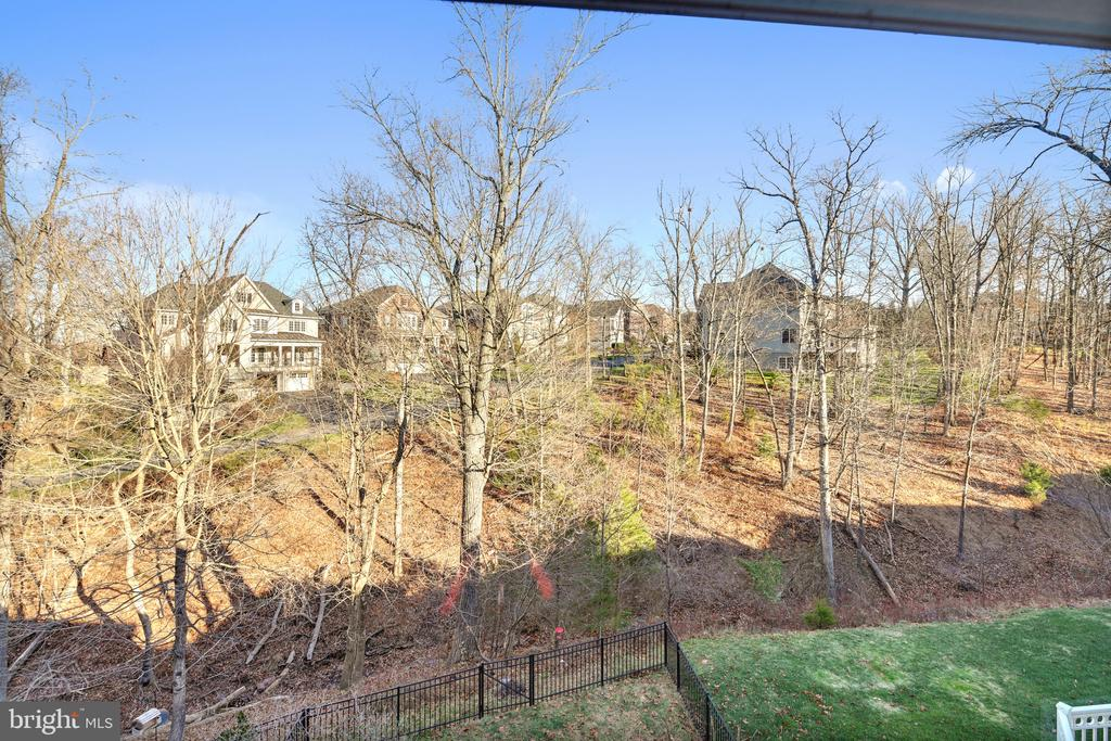 Amazing views - 18216 CYPRESS POINT TER, LEESBURG
