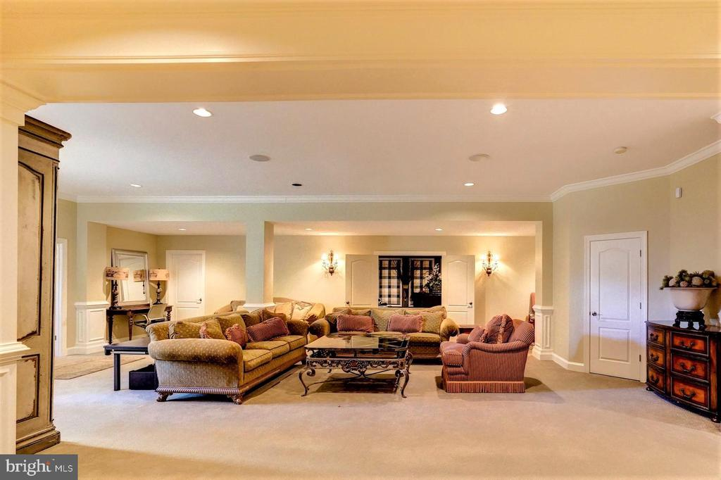 Lower Level Family Room - 16717 WHIRLAWAY CT, LEESBURG