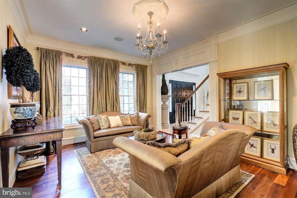 Living Room - 16717 WHIRLAWAY CT, LEESBURG