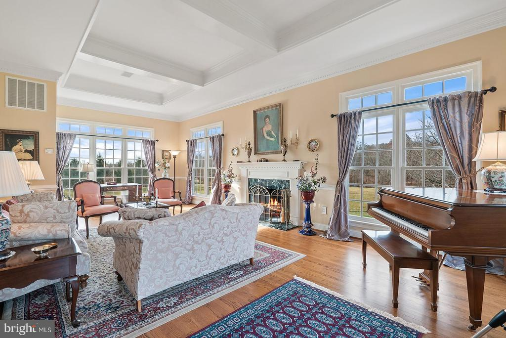 Amazing conservatory room with coffered ceilings - 37239 HUNT VALLEY LN, PURCELLVILLE