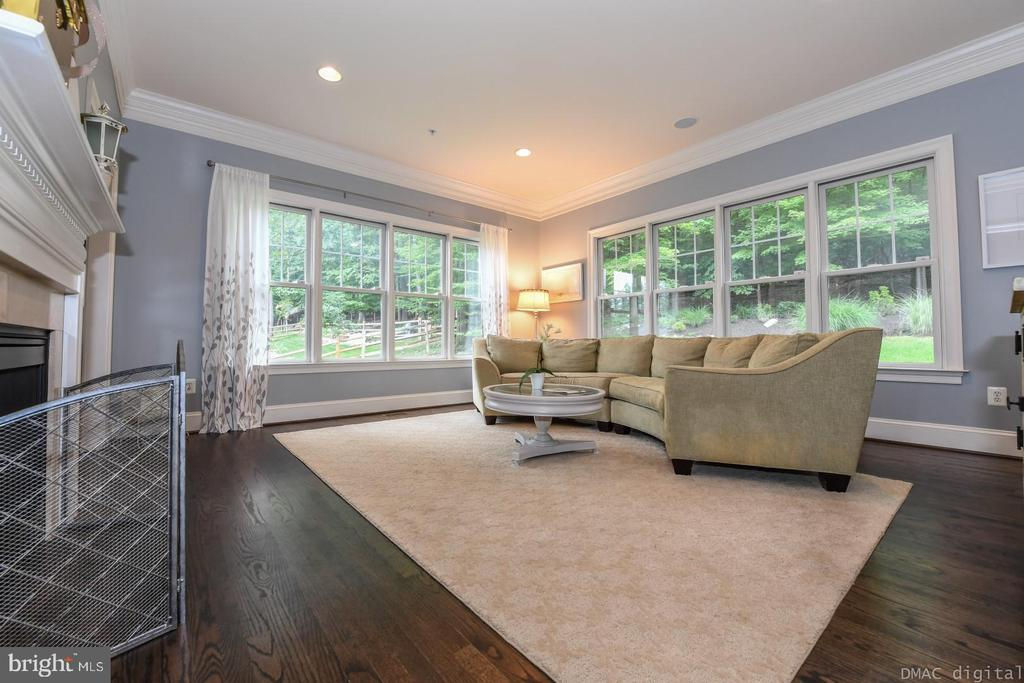 Plenty of light in this relaxing family room. - 6720 BOX TURTLE, NEW MARKET