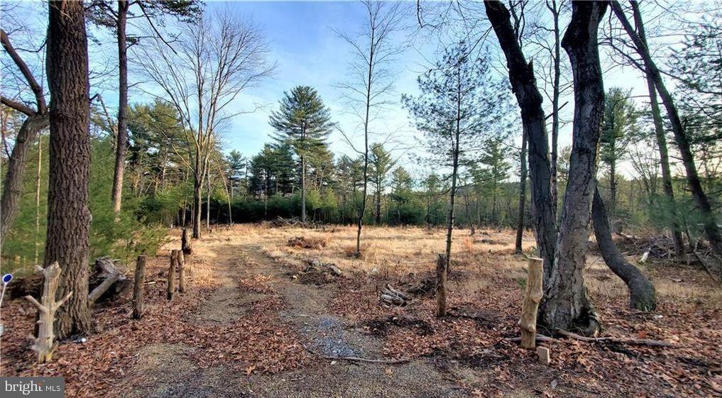 Land for Sale at Palmerton, Pennsylvania 18071 United States