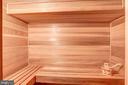 Sauna - 6126 RAMSHORN DR, MCLEAN