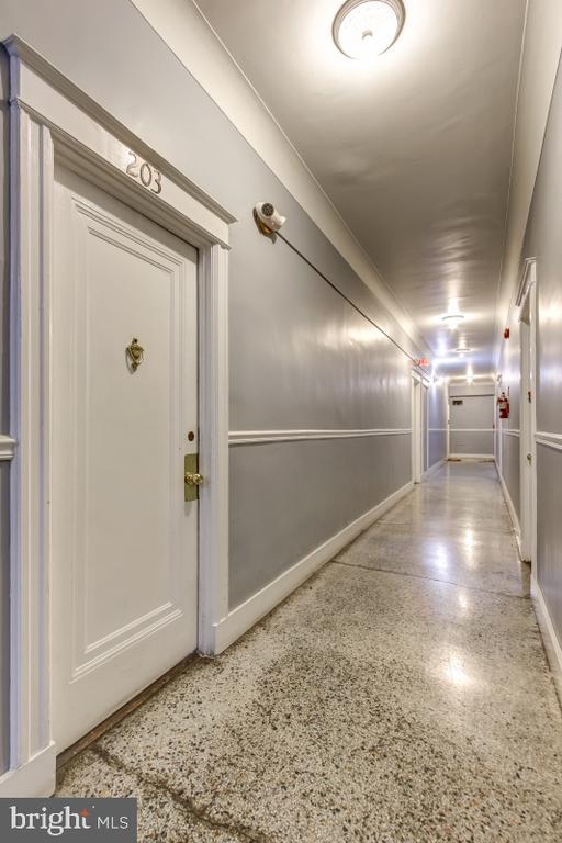 - 3618 CONNECTICUT AVE NW #203, WASHINGTON