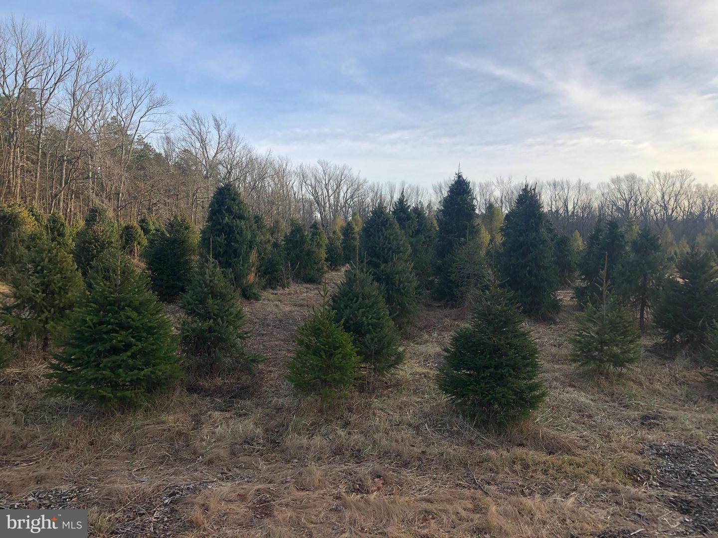 Land for Sale at New Egypt, New Jersey 08533 United States