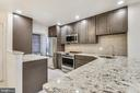 Gorgeous new kitchen you'll be the first to use! - 2014 SWANS NECK WAY, RESTON