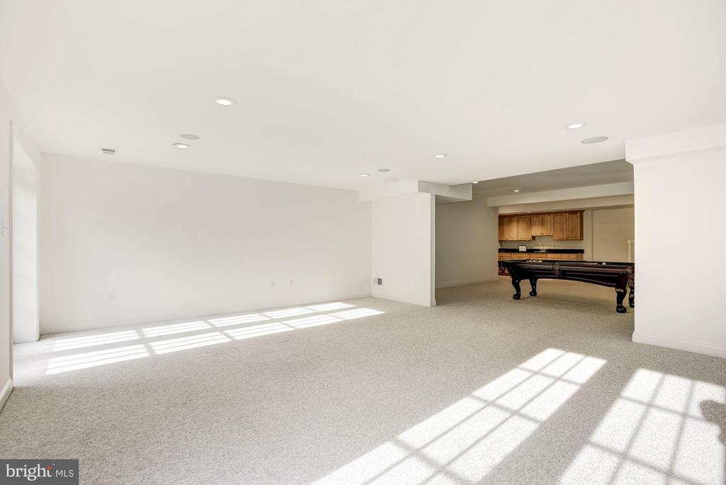 Lower Level Recreation Room - 1006 BRYAN POND CT, MCLEAN