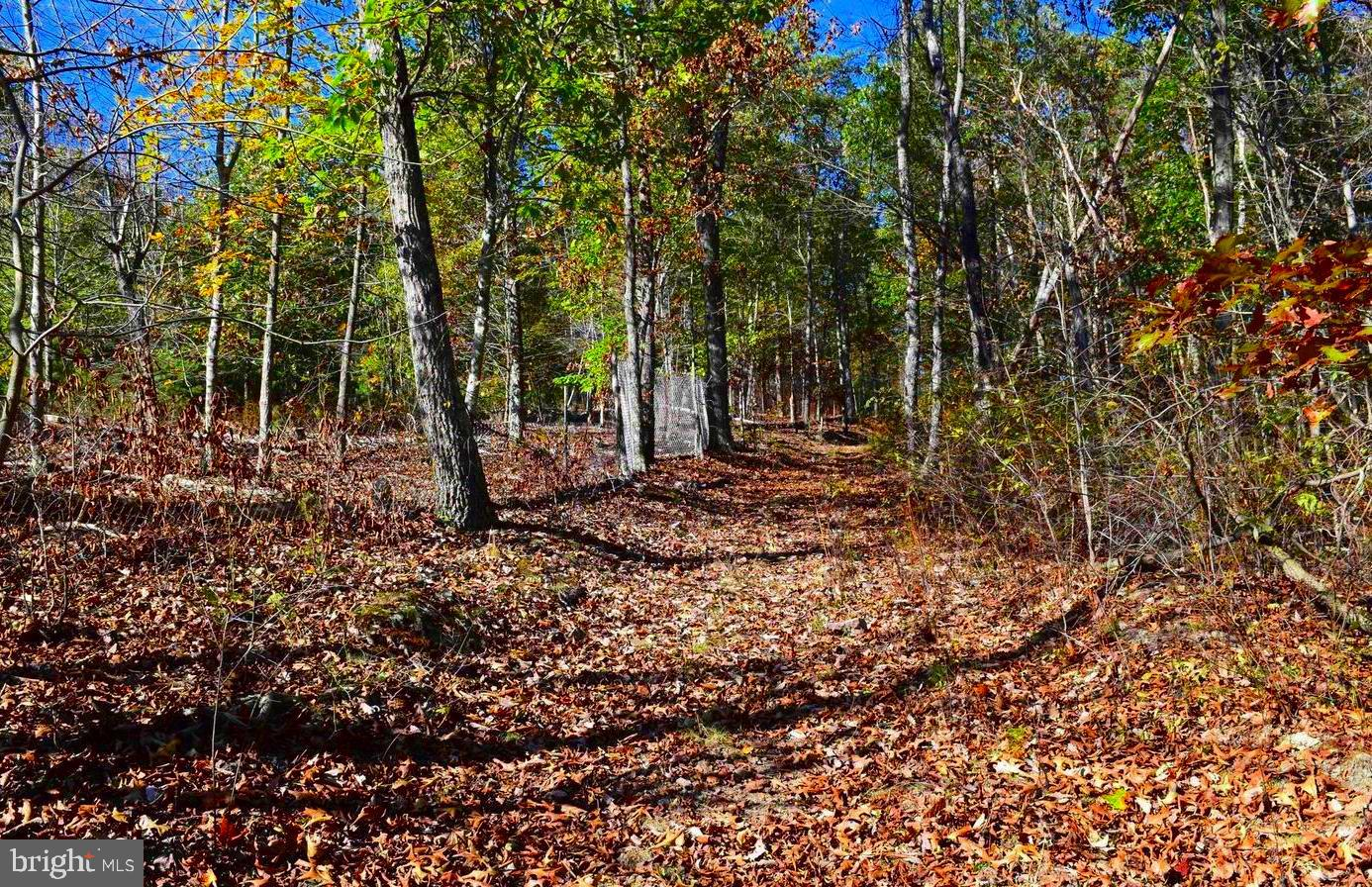 Land for Sale at Hyndman, Pennsylvania 15545 United States