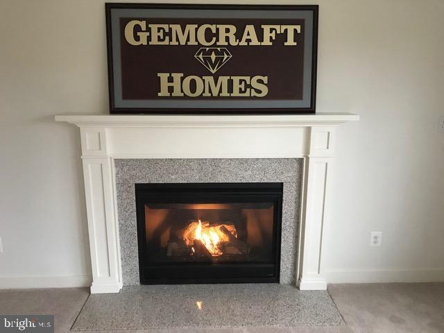 Family Room Fireplace - 9836H MAGLEDT RD, PARKVILLE