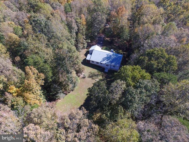 Trees give you added privacy - 9325 WYNDHAM HILL LN, SPOTSYLVANIA