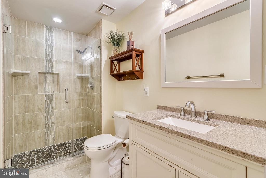 Lower Level - Bathroom - 43347 BUTTERFIELD CT, ASHBURN