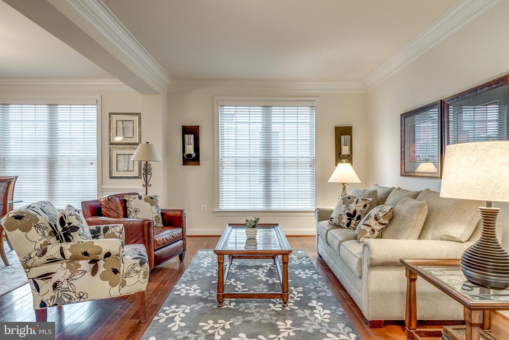 Living Room with Floor to Ceiling Windows - 21431 FAIRHUNT DR, ASHBURN