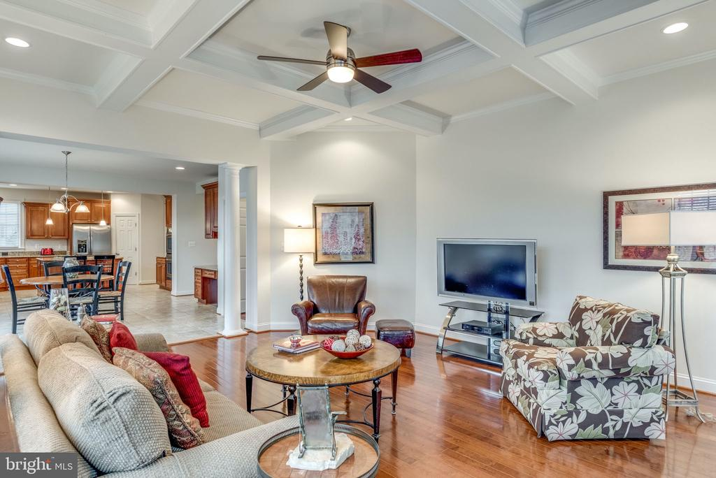 Perfect spot to cozy up & watch a movie! - 21431 FAIRHUNT DR, ASHBURN