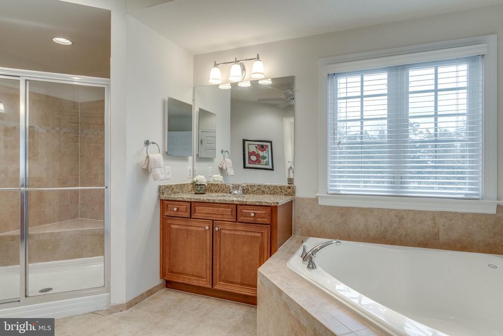 Master Bathroom w/ Large  Soaker Tub & Shower - 21431 FAIRHUNT DR, ASHBURN