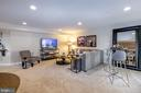 Fully finished basement - 14311 BENTLEY PARK DR, BURTONSVILLE