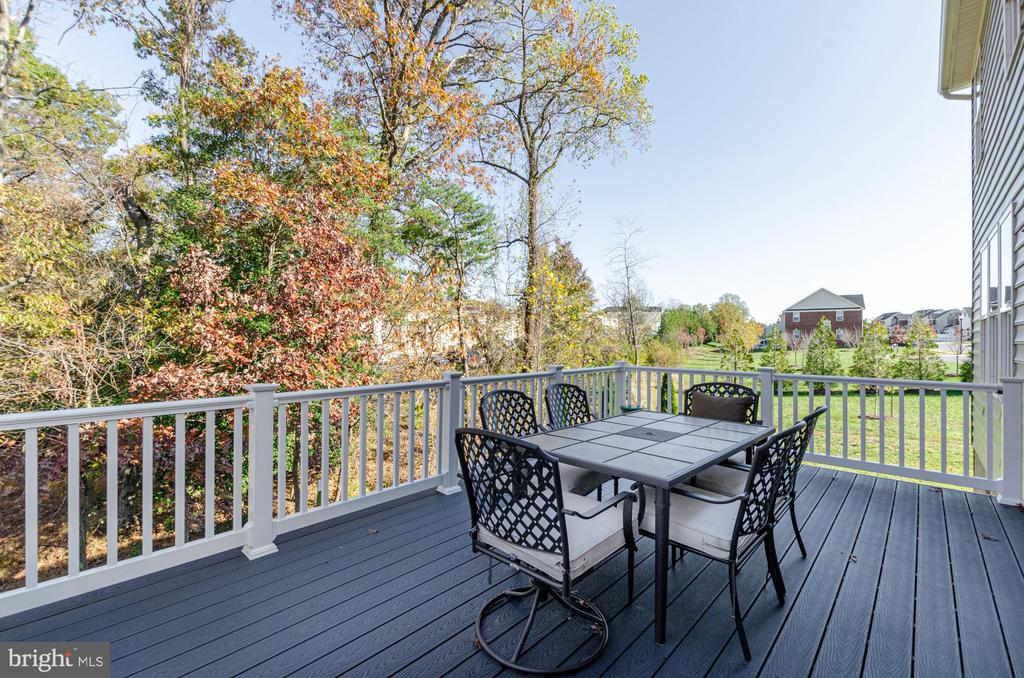 Backs to woods with green space on the side - 14311 BENTLEY PARK DR, BURTONSVILLE