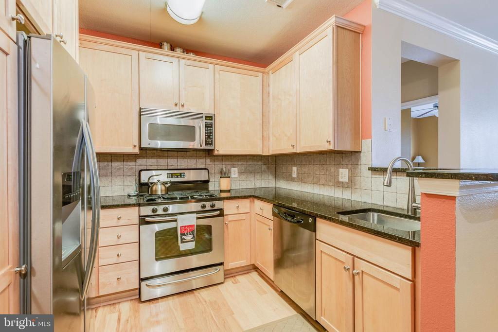 Stainless appliances - 11750 OLD GEORGETOWN RD #2430, NORTH BETHESDA