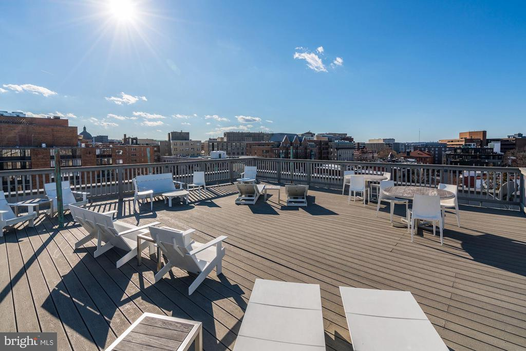 Amazing views from community roof deck - 1514 17TH ST NW #511, WASHINGTON