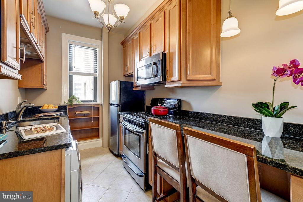 Updated Kitchen with breakfast bar - 1514 17TH ST NW #511, WASHINGTON